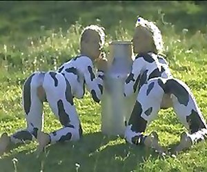 Smiling Cows